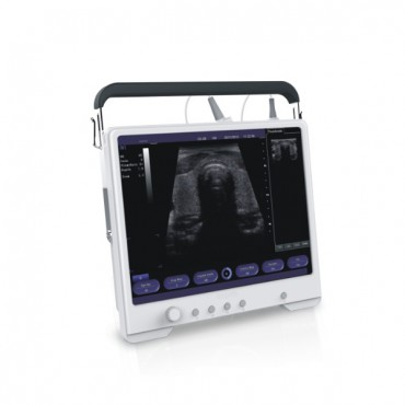 HQ Color Diagnostic Ultrasound System MSLPU32