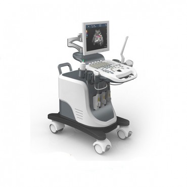 Latest Convenient Color Doppler Ultrasound Machine MSLCU24