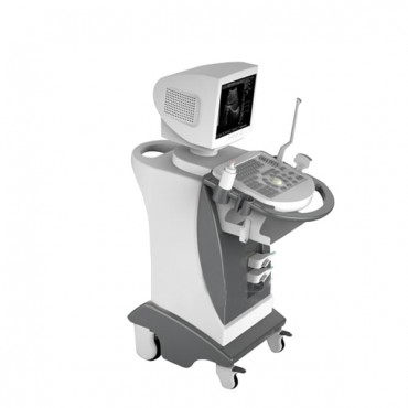 Economic Hospitals & Clinics Digital Trolley Ultrasound Scanner- MSLTU01