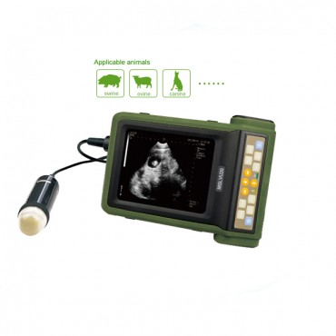 Cost-effective Veterinary Ultrasonic Diagnostic Instrument For Sale MSLVU20