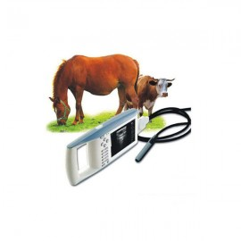 Find Human/  VET Full Digital Ultrasonic Instruments MSLVU02